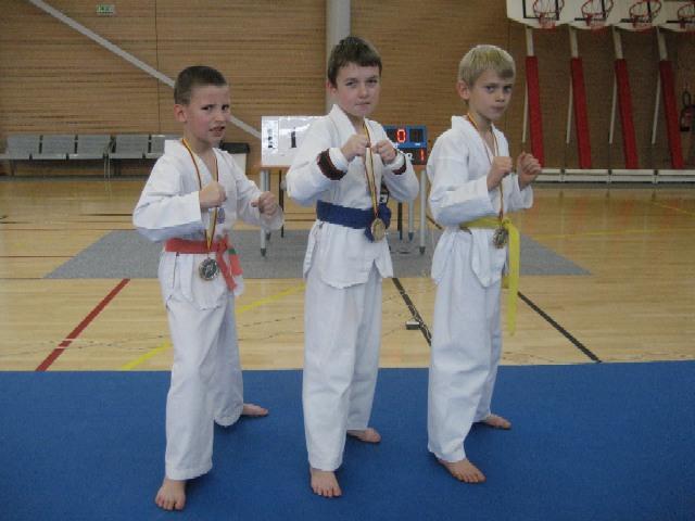 Le club de Taekwondo de Sarreguemines: nos trois petits champions