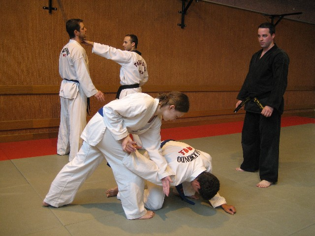 Stage d'Hapkido organisé par le club de Taekwondo de Sarreguemines