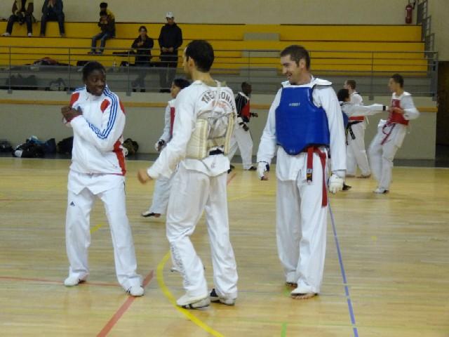 Le club de Taekwondo de Sarreguemines: Stage combat avec Gwladys EPANGUE