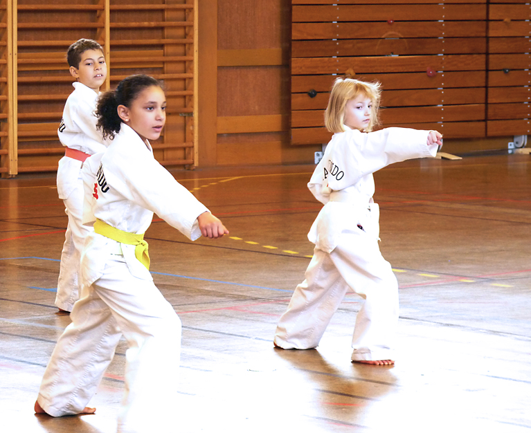 Le club de Taekwondo de Sarreguemines: ouverture de la section HAPKIDO
