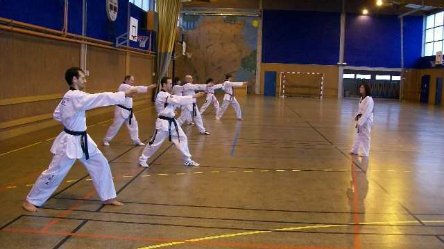 Le club de Taekwondo de Sarreguemines: Stage Technique avec Elise Becker