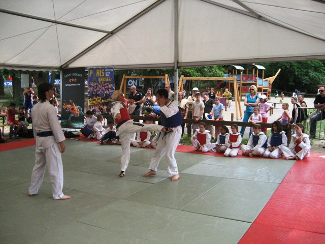 Le club de Taekwondo de Sarreguemines - Lorraine: La fête du sport du 4 juin 2011