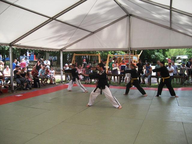Le club de HAPKIDO de Sarreguemines: La fête du sport du 4 juin 2011