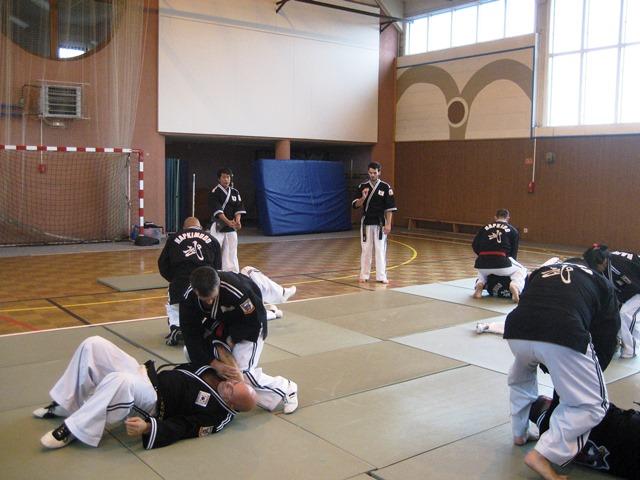 Le club de Taekwondo de Sarreguemines - Lorraine: Stage Hapkido à Valmont
