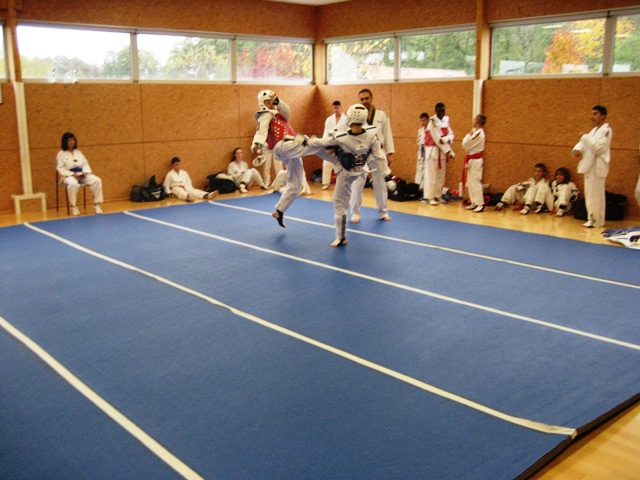 Le club de Taekwondo de Sarreguemines - Lorraine: CFE stage d'entrainement