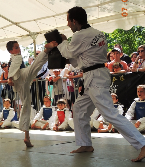 Le club de Taekwondo de Sarreguemines - Lorraine: La fête du sport à Sarreguemines.
