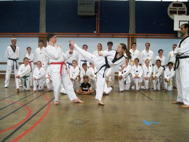 Le club de Taekwondo de Sarreguemines - Lorraine: L'entrainement
