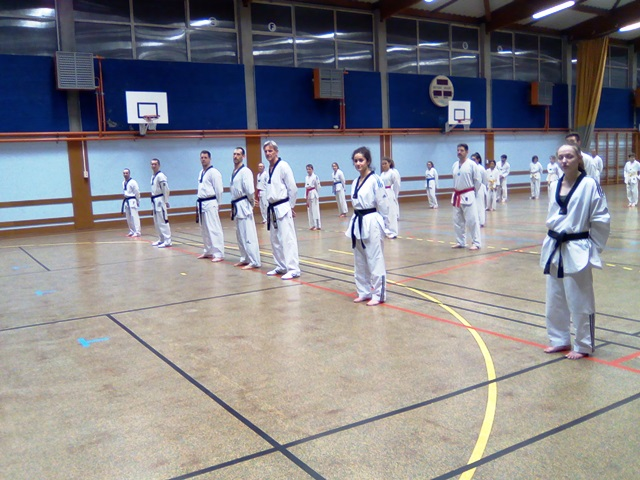 le club de taekwondo de sarreguemines lorraine l 39 entra nement technique la salle. Black Bedroom Furniture Sets. Home Design Ideas