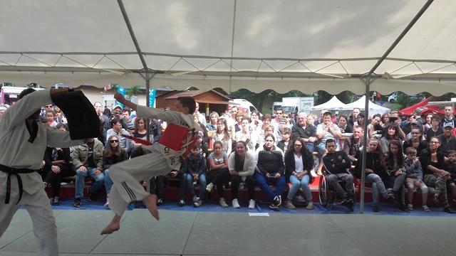 Le club de Taekwondo de Sarreguemines - Lorraine: Fête du Sport