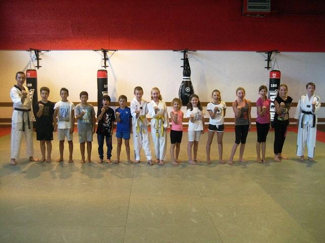 Le club de Taekwondo de Sarreguemines - Lorraine: Ticket Sport à Sarreguemines