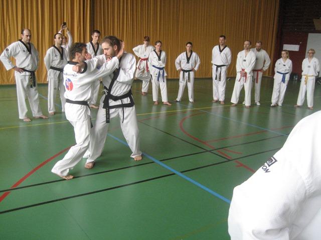 Le club de Taekwondo de Sarreguemines - Lorraine: Stage Technique-Hapkido-Tai Chi à Strasbourg