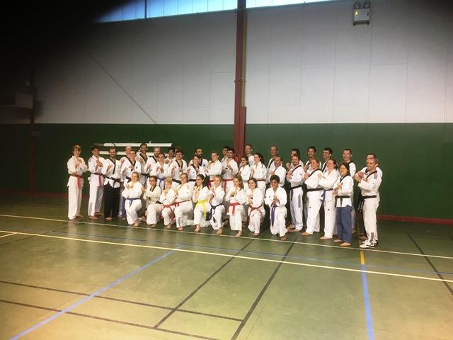 Le club de Taekwondo de Sarreguemines - Lorraine: Stage technique à Seichamps