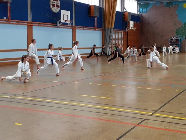 Le club de Taekwondo de Sarreguemines - Lorraine: Les entrainements