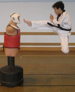 Le club de Taekwondo de Sarreguemines: horaire des cours de TAEKWONDO