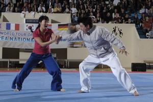 Taekwondo Sarreguemines: Démonstration Ho Shin Soul